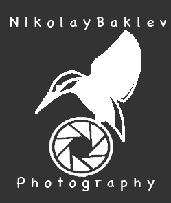 NikiBaklev Nature and Wildlife Photography | Bulgaria ( Facebook group )
